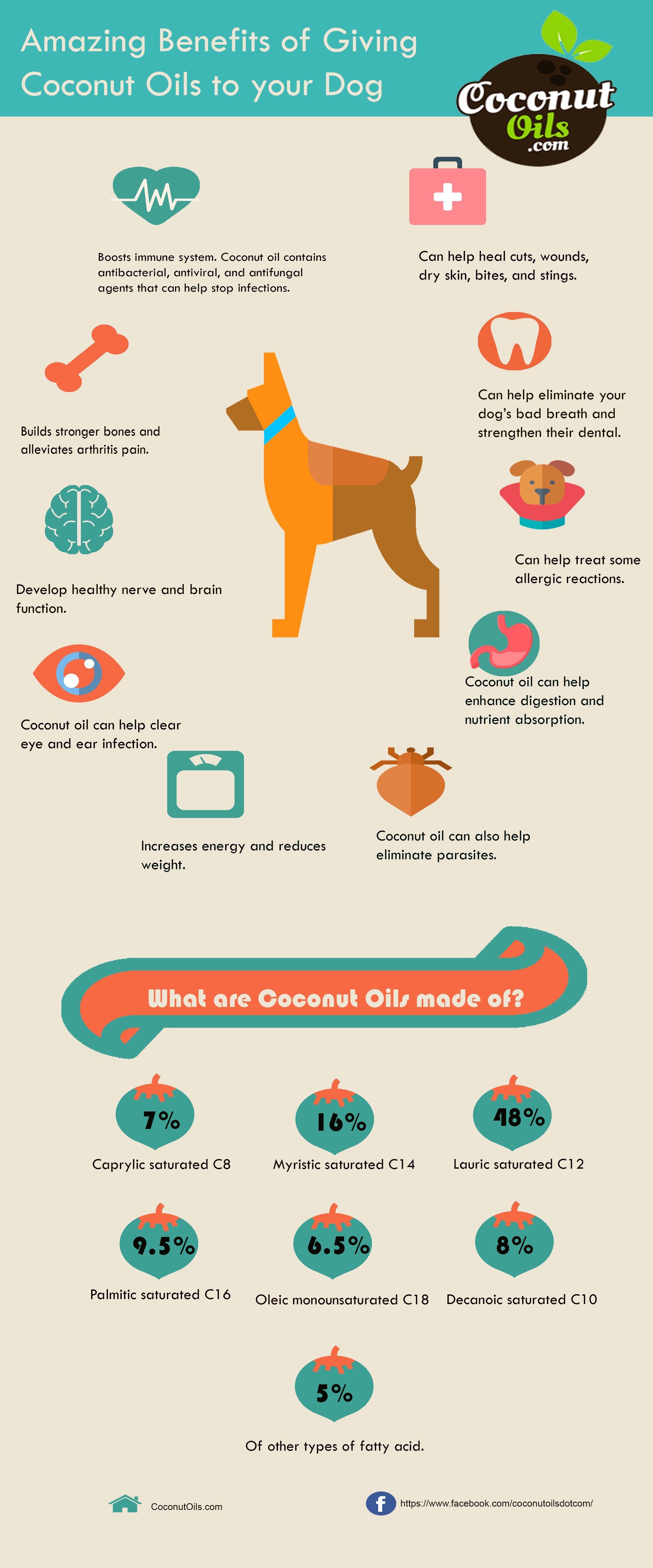 Amazing Benefits of Coconut Oil to your Dogs