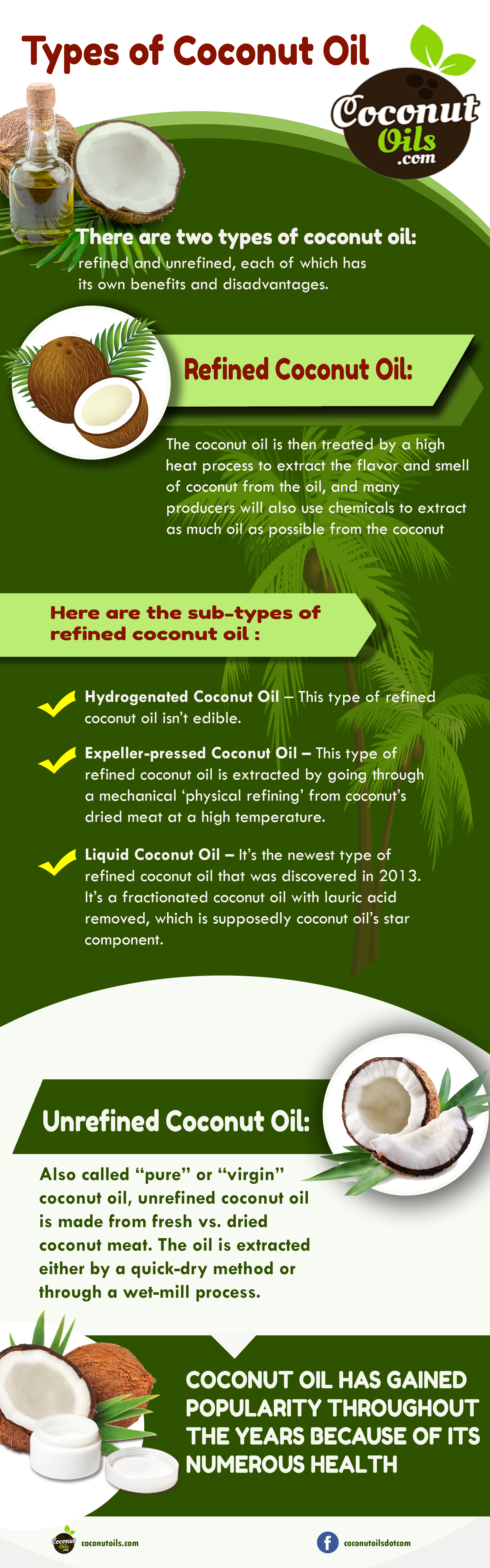 Image of Types of Coconut Oils Infographics